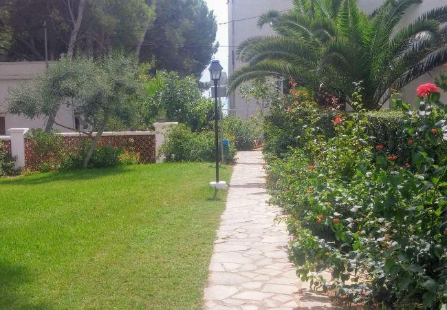 Ferienwohnung in Alcoceber - TRES CARABELAS 127