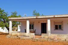 Landhaus in Alcoceber - CASA CAMI L' ESTANY