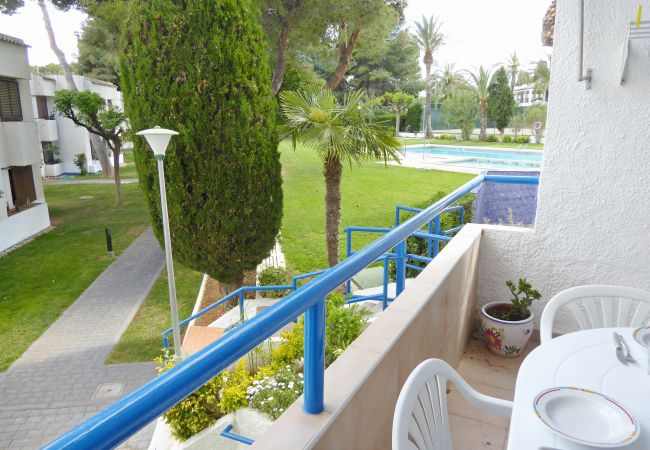 Apartment in Alcocebre / Alcossebre - MARINA 107