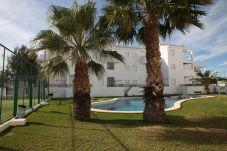 Appartement à Alcocebre / Alcossebre - ÁTICO CON TERRAZA Y SOLARIUM